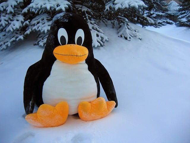 caracteristicas de Linux
