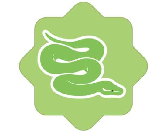 que es python