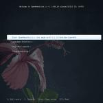 OpenMandriva: Análisis completo del sistema