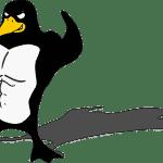 Distribuciones Linux: La Guía Definitiva – Parte 2